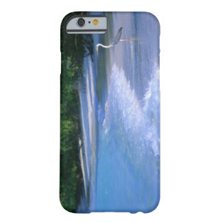 Beach 2 barely there iPhone 6 case