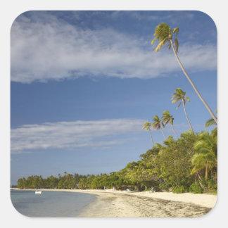 Beach and palm trees, Plantation Island Resort Square Sticker