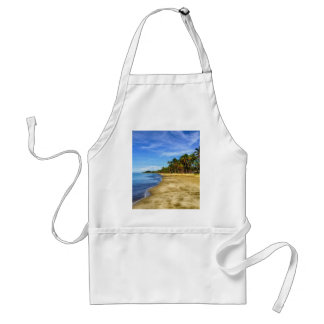 Beach Aprons