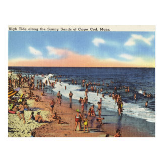Beach at Cape Cod Postcard