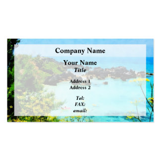Beach at St. George Bermuda Pack Of Standard Business Cards