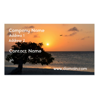 Beach at Sunset Pack Of Standard Business Cards