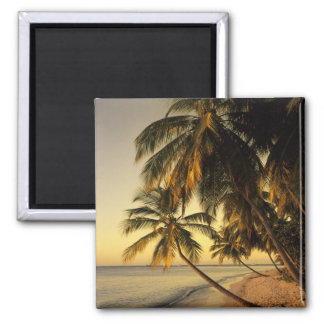 Beach at sunset, Trinidad Square Magnet