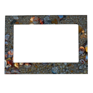Beach Baubles in Late Day Sun Magnetic Picture Frame