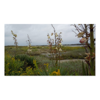 Beach Clouds and Wildflowers - Oak Island, NC Double-Sided Standard Business Cards (Pack Of 100)