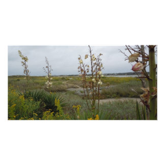 Beach Clouds and Wildflowers - Oak Island, NC Picture Card