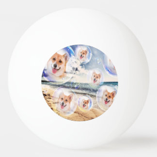 Beach Corgis Ping Pong Ball