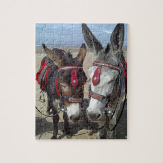 beach donkeys jigsaw puzzle