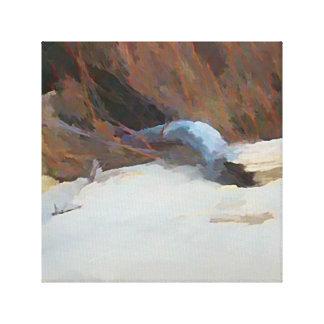 Beach Drift Wood Canvas Print