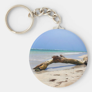 Beach drift wood keychain