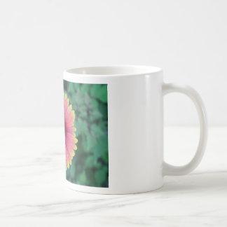 Beach Flower Coffee Mugs