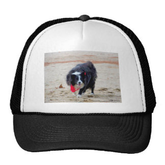 Beach Fun Cap