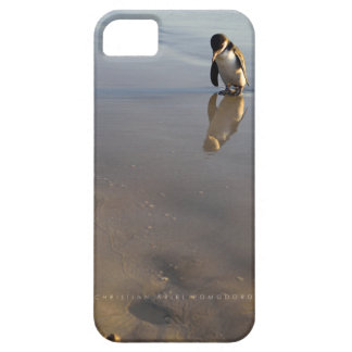 Beach Going Penguin Case For The iPhone 5