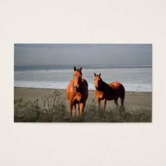 Beach Horses Business Card