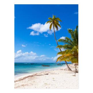 Beach in Saona Dominican Republic Postcard