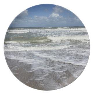 Beach Life Plate