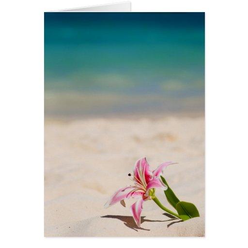 Beach Lily Greeting Card
