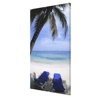 Beach, Lounge Chair, Palm tree, Horizon Over Canvas Prints
