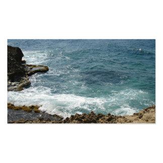 Beach Meets Ocean Pack Of Standard Business Cards