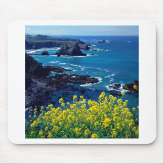 Beach Pacific Coastline Wildflowers Mendocino Mouse Pads