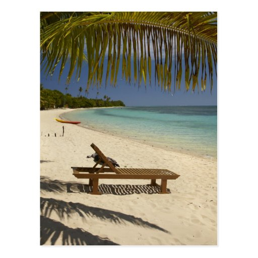 Beach, palm trees & lounger post cards