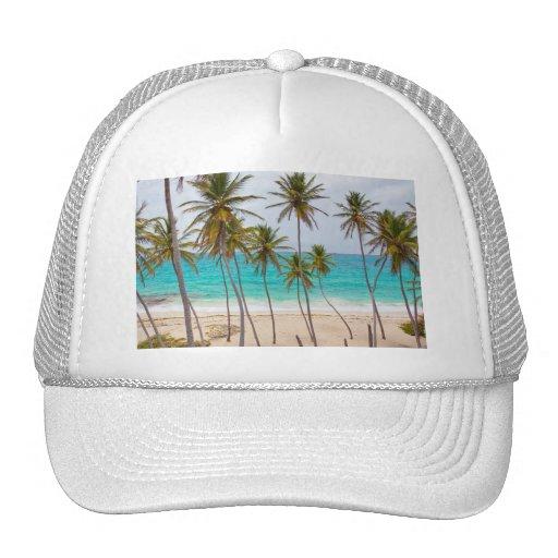 Beach Palms Trucker Hat