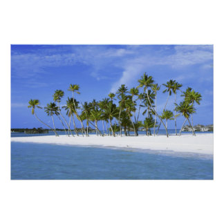 beach paradise with hammock_Maldives poster