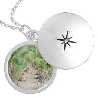 Beach plants summer locket necklace