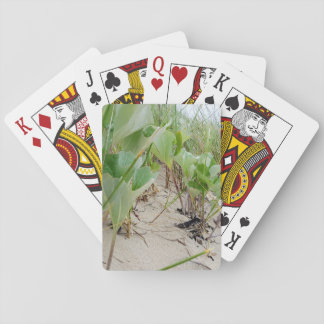Beach plants summer playing cards