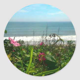 Beach Plum Beach Bum Classic Round Sticker