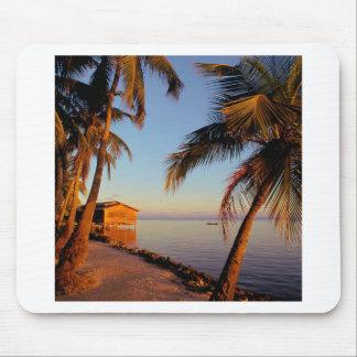 Beach Roatan Honduras Mouse Pads