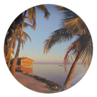 Beach Roatan Honduras Dinner Plate