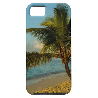 Beach scenic case for the iPhone 5