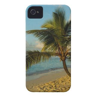 Beach scenic Case-Mate iPhone 4 cases