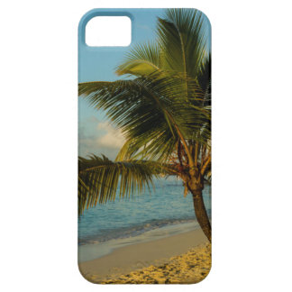 Beach scenic iPhone 5 covers
