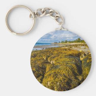 Beach Seaweed Key Ring