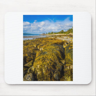 Beach Seaweed Mouse Pad
