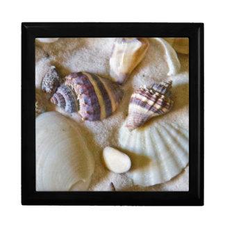 Beach Shells Theme #2 Gift Box
