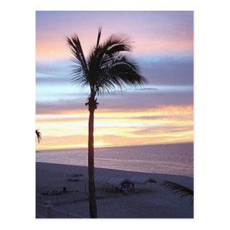 beach side scene at sunset postcard