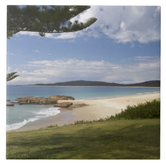Beach, South West Rocks, New South Wales, Large Square Tile