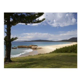 Beach, South West Rocks, New South Wales, Postcard