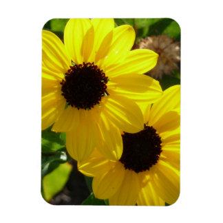 Beach Sunflowers Magnet