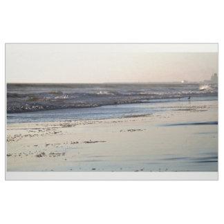 Beach Sunset Ormond Beach Fabric