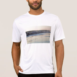 Beach Sunset Ormond Beach T-Shirt