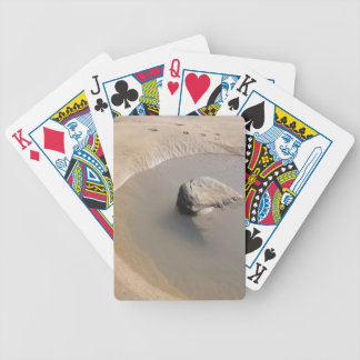 BEACH TIDAL POOL Playing Cards