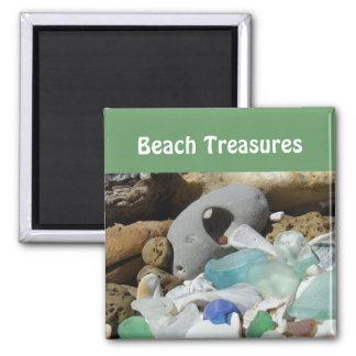 Beach Treasures magnets Sea Glass seaglass Fossils