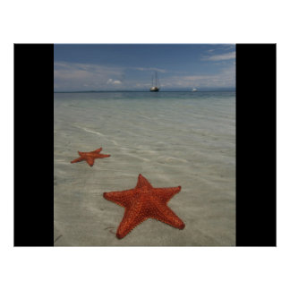Beach water sea ocean star fish sand personalize poster