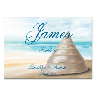 Beach Wedding Place Cards Table Cards Table Card