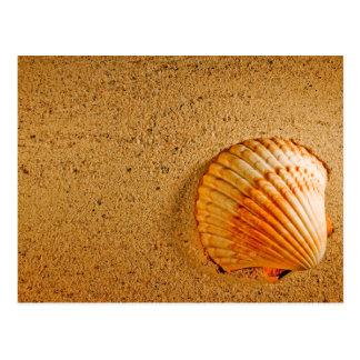 Beach Wedding Tropical RSVP Invitation Post Card