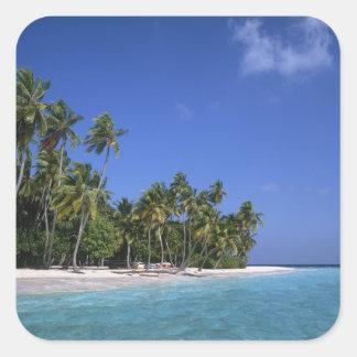 Beach with palm trees, Maldives Square Sticker